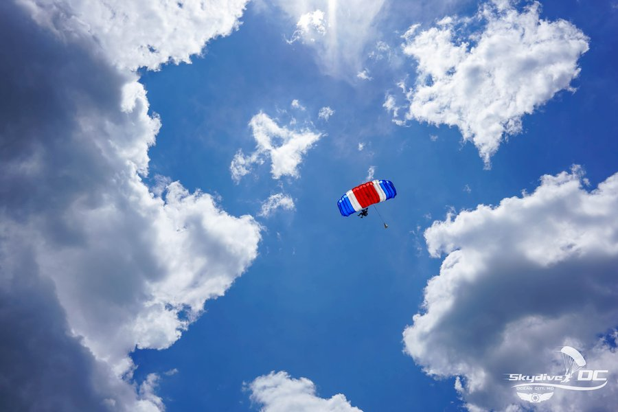 What Does Terminal Velocity Mean In Skydiving?